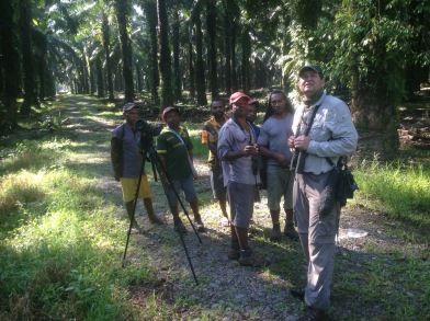 birding the Oil Palms